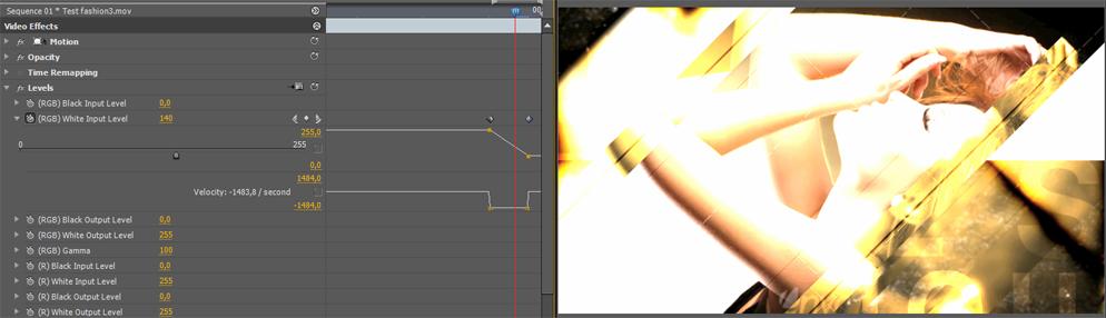 Animation des niveaux d'entrées blanc sour Première Pro
